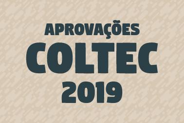 tumb noticias - Aprovados COLTEC 2019-01 (1)